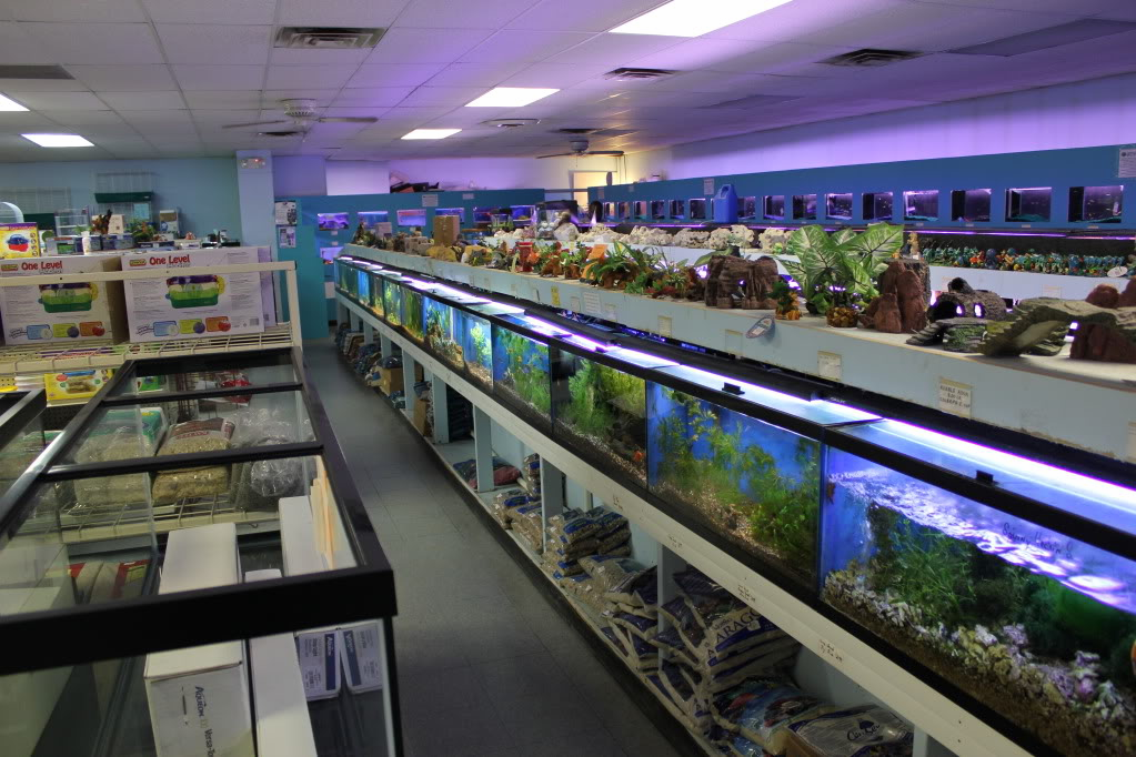 301 moved permanently for Fish and pet store